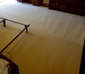 Citrus Plus Carpet Cleaning