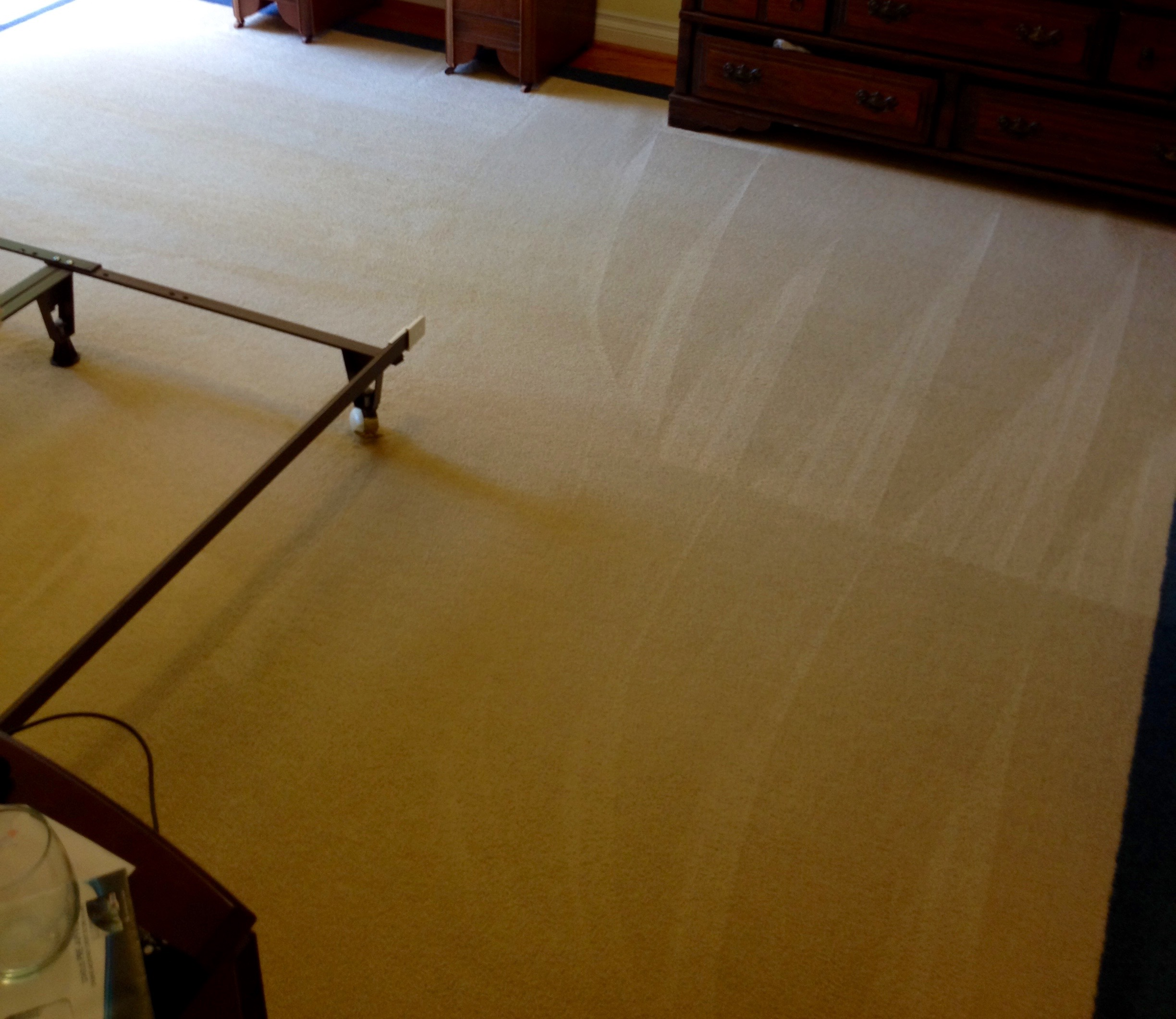 Citrus Plus_ Area Rug Cleaning_after